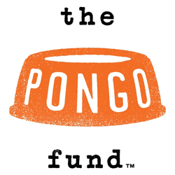 Pong Fund